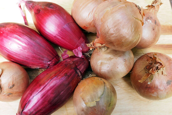 On the left, the distinctive lozenge-shaped Cipolla Rossa onions from Tropea in Calabria. On the right, the rose-tinted onions from Roscoff in Brittany (photo © hidden europe).