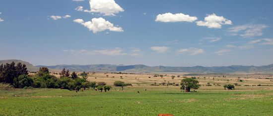 Eastern Mpumalanga in South Africa