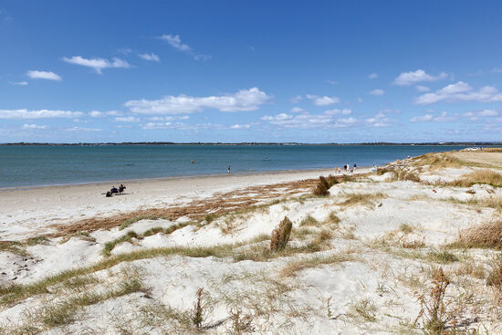 A beach at Thorney Island in Chichester Harbour, West Sussex (photo © Ac Manley / dreamstime . com).