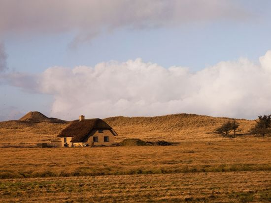 Solid farmsteads are common along the west Jutland coast, and some cultivation is even possible when the dunes have been stabilised (photo © hidden europe).