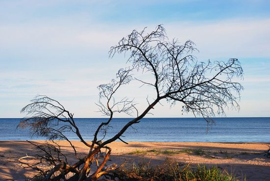 The shores of Cape Kolka on Latvia's coast(photo © Dat / dreamstime.com).