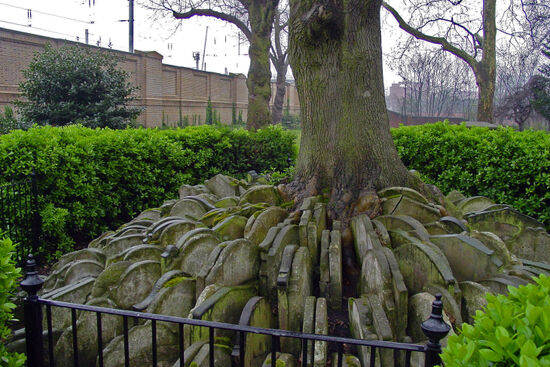 The extension of the Midland Railway to St Pancras necessitated the demolishion of Agar Town. At the same time St Pancras churchyard was reduced in size. Many of the tombstones which were removed were gathered together around the oak tree pictured above (photo © David Edgar licensed under CC BY-SA 3.0).