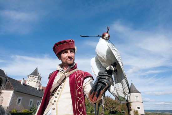 Falconer Vladimir Garaj in historical costume with a white gyrfalcon at Schloss Rosenburg, Lower Austria (photo © Rudolf Abraham).