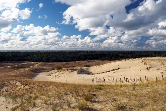 View from one of the dunes towards the forested area of the Curonian Spit with the Baltic in the distance (photo © hidden europe).
