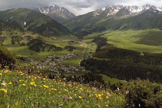 Jyrgalan village and the valley seen from an alpine meadow above (photo © Laurence Mitchell).