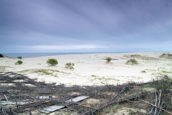 Erosion-prone sand dunes stablised with wood near Rybachy on the Russian section of the Curonian Spit (photo © hidden europe).