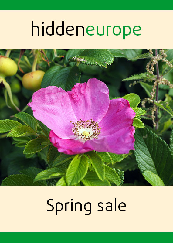 Spring sale hidden europe magazine